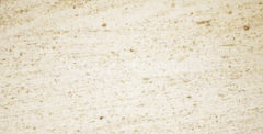 Moca Cream Classic limestone polished
