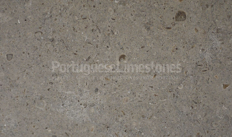 Perlato limestone